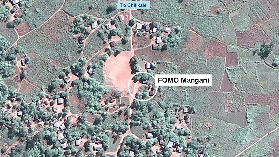 Mangani
