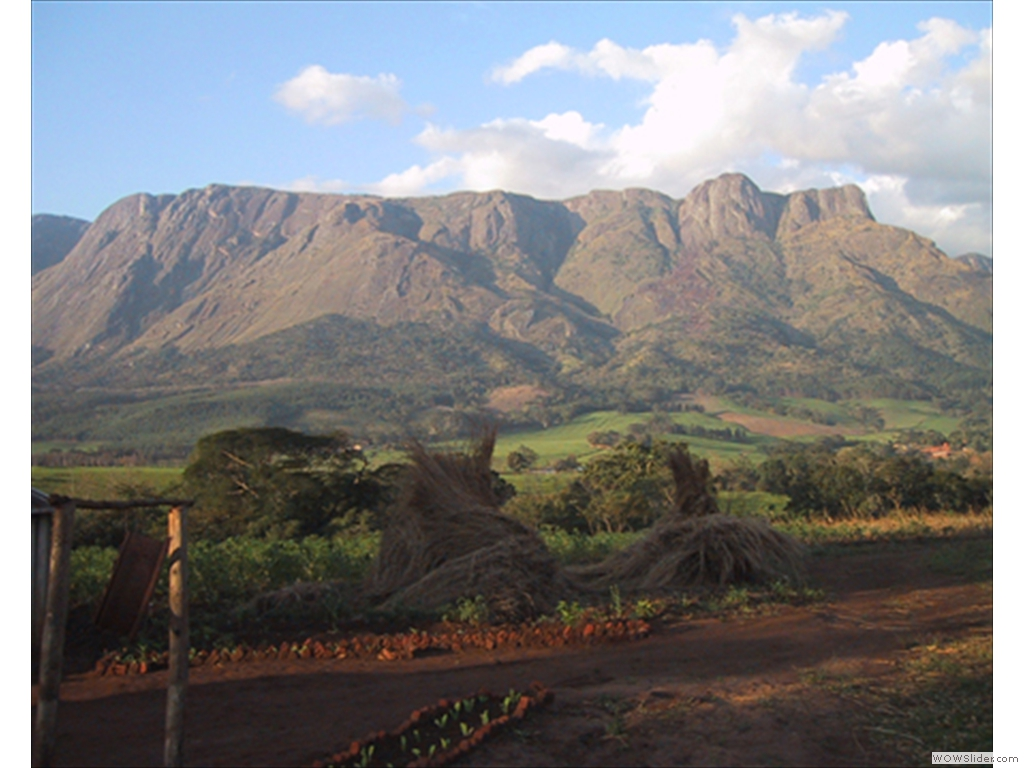 Mulanje Mountain1000