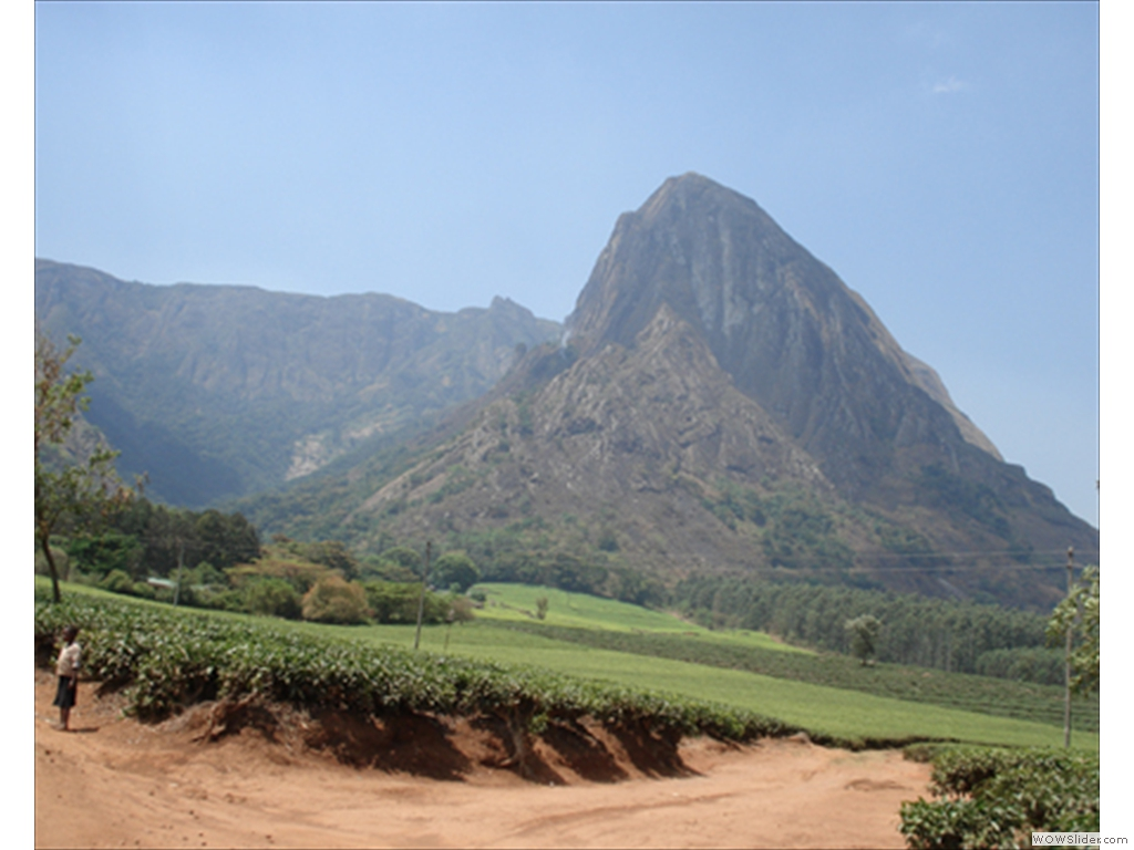 Mulanje Mountain1004