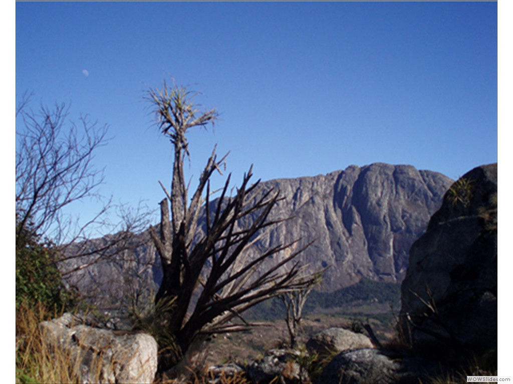 Mulanje Mountain1008
