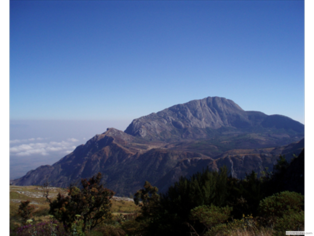 Mulanje Mountain1012
