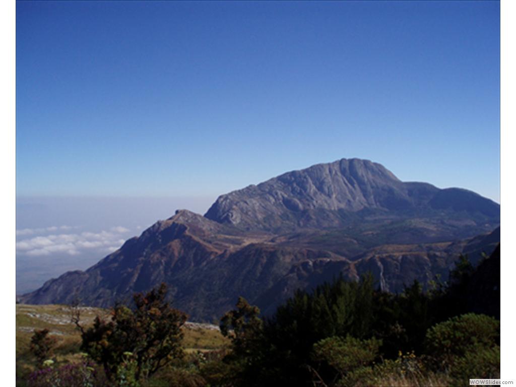 Mulanje Mountain1012