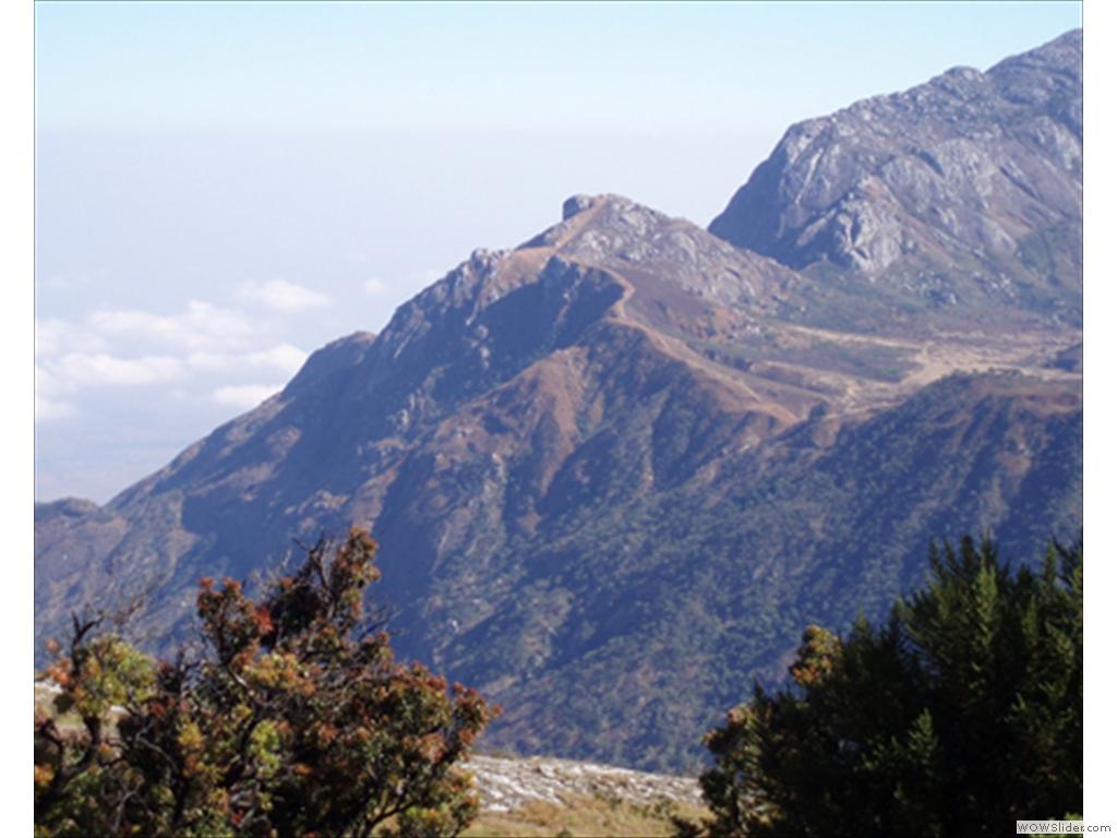 Mulanje Mountain1013